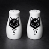 Black Cats: Salt & Pepper Shaker Set